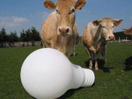 Giant Light Bulb